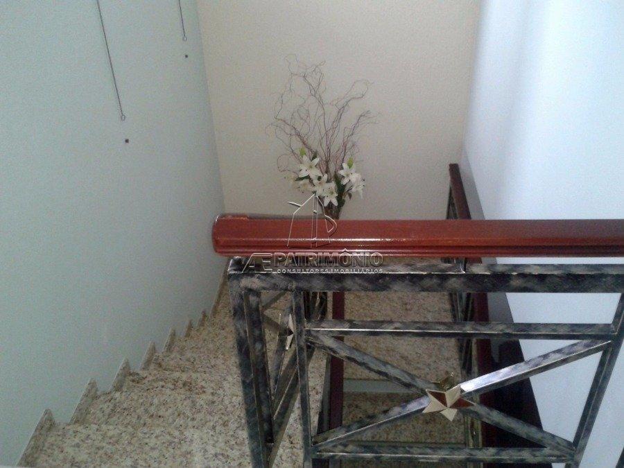 9 Escada