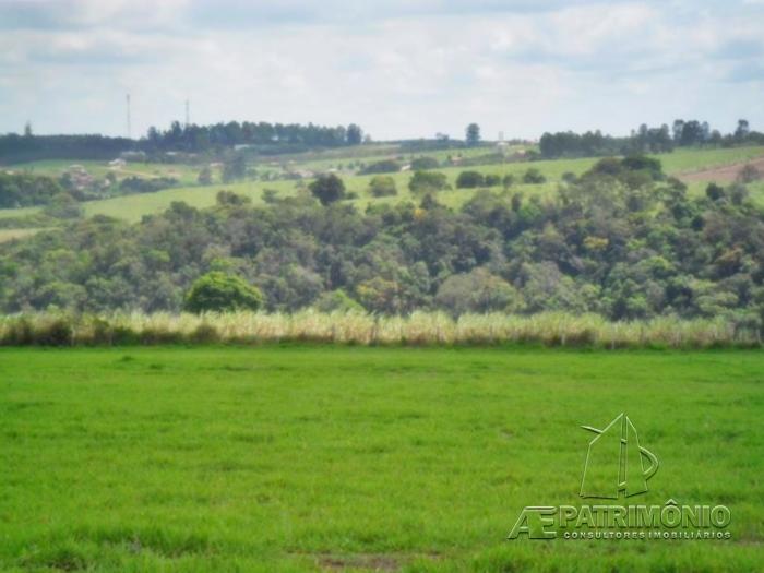 Terreno à venda em Floresta, Sarapui - SP