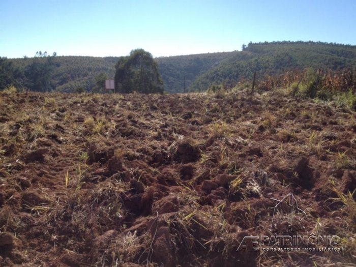 Terreno à venda em Ribeirao, Pilar Do Sul - Sp