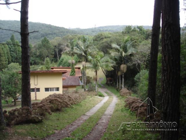 Sitio de 3 dormitórios à venda em Soares, Piedade - Sp