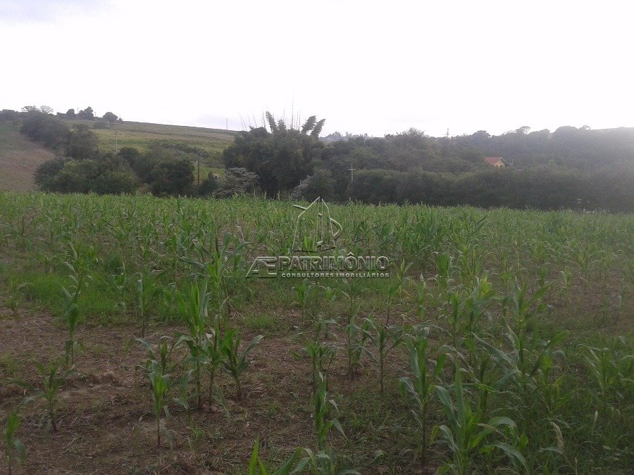 Sitio à venda em Capanema, Araçoiaba Da Serra - SP