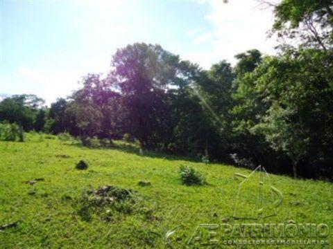 Terreno à venda em Agua Choca, Pereiras - Sp